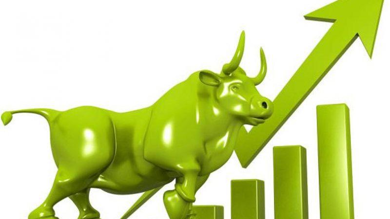 नेप्सेमा चमक ः बजार पूँजीकरण ४१ खर्ब नाघ्यो, सात कम्पनीको शेयरमा सर्किट